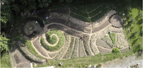 permaculture-garden_markus-p-pan